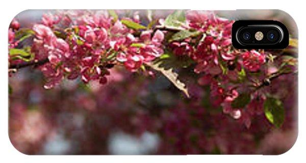 Crabapple In Spring Panoramic IPhone Case