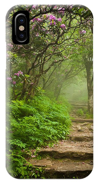 Craggy Steps IPhone Case