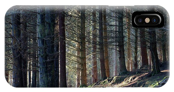 Craig Dunain - Forest In Winter Light IPhone Case