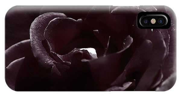Cranberry Rose IPhone Case