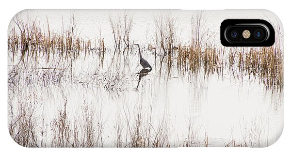 Crane In Reeds IPhone Case