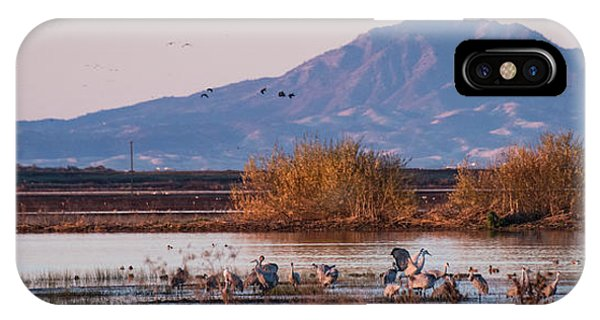 Cranes In The Morning IPhone Case