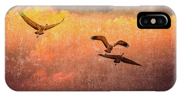 Cranes Lifting Into The Sky IPhone Case