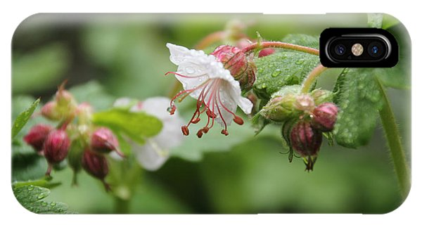 Cranesbill Raindrops IPhone Case