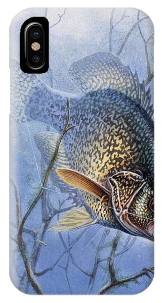 Crappie Cover Tangle IPhone Case