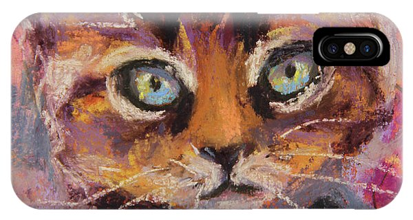 Crazy Cat Tabby  IPhone Case