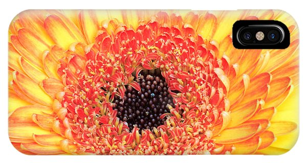 Creation Of A Masterpiece Phone Case by Pierre Leclerc Photography
