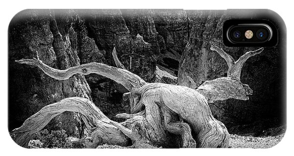 Creatures Of Bryce Canyon IPhone Case