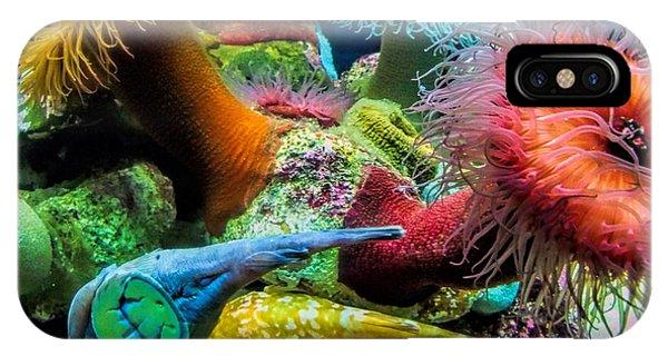 Creatures Of The Aquarium IPhone Case