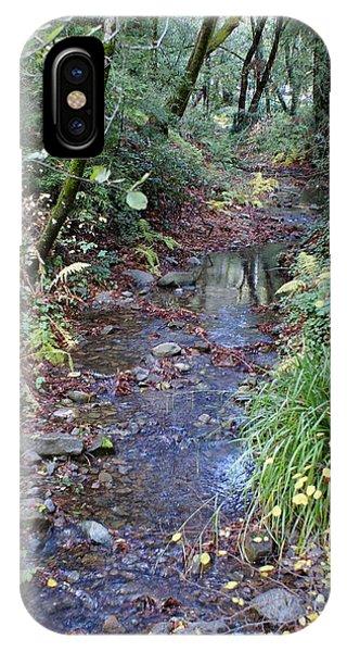 Creek On Mt Tamalpais 2 IPhone Case