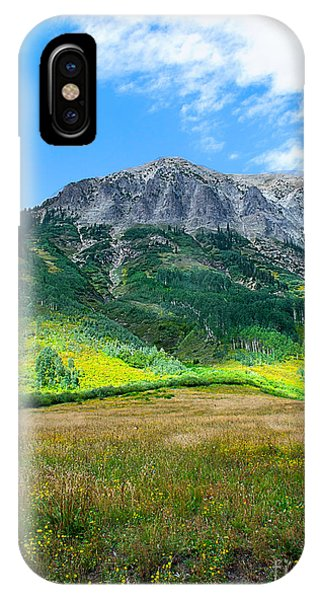 Crested Butte Aspens IPhone Case