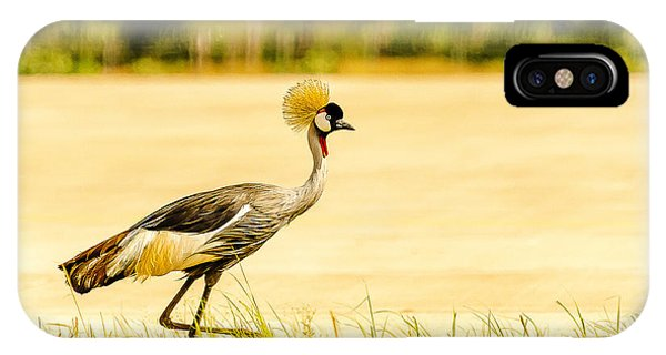 Crested Crane IPhone Case
