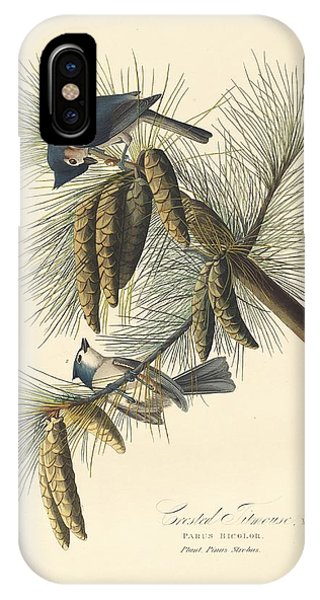Titmouse iPhone Case - Crested Titmouse by Dreyer Wildlife Print Collections