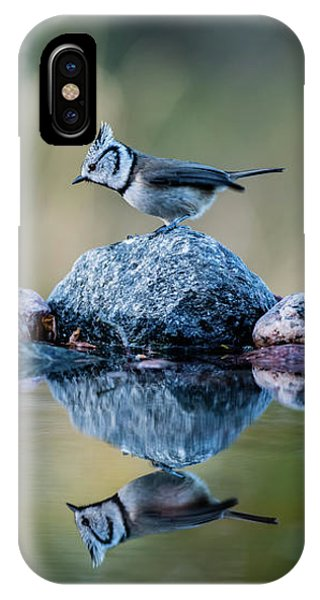 Crested Tit's Reflection IPhone Case