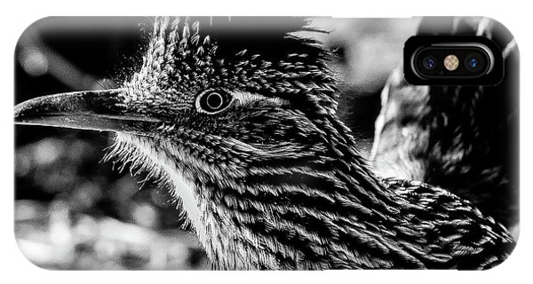 Cresting Roadrunner, Black And White IPhone Case