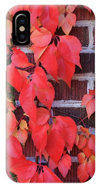 IPhone Case featuring the photograph Crimson Leaves by David Chandler