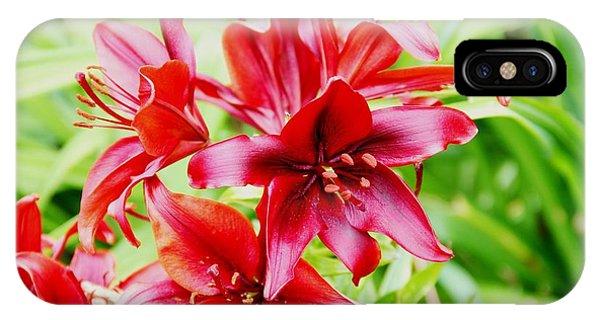 Crimson Lilies IPhone Case