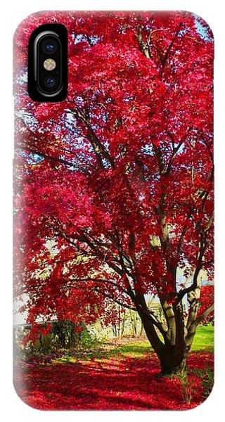 Crimson Radiance IPhone Case