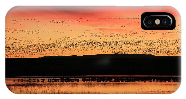 Crimson Sunset At Bosque IPhone Case
