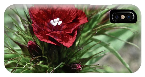 Crimson Velvet  IPhone Case