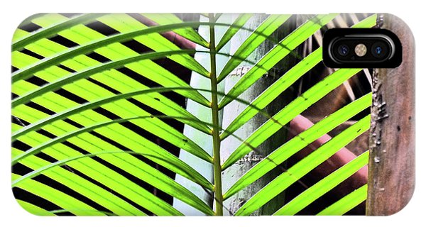 Crisscrossing Palms IPhone Case