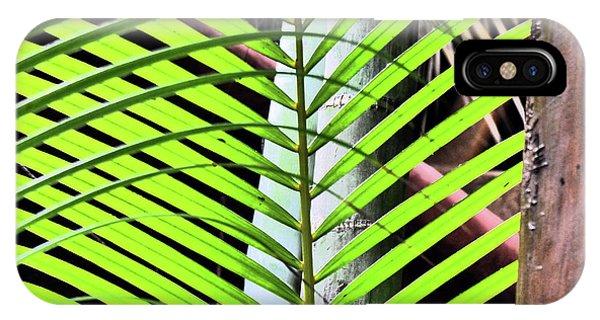 Crisscrossing Palms IPhone Case