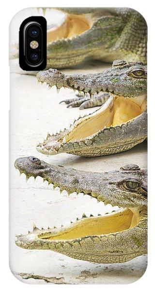 Crocodile Choir IPhone Case