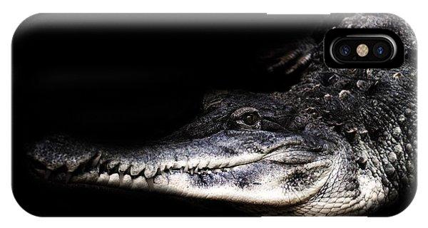 Crocodile iPhone Case - Crocodile by Martin Newman