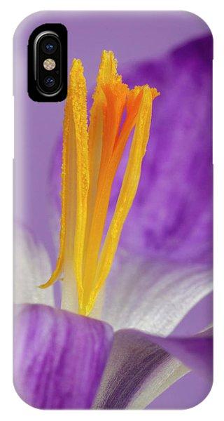 Crocus Stamens  IPhone Case