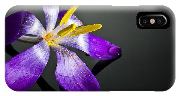 Petals iPhone Case - Crocus by Svetlana Sewell