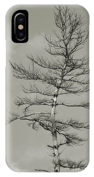 Crooked Tree IPhone Case