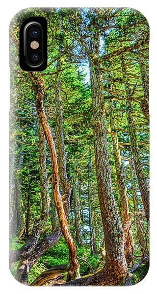 Crooked Trees Of Mt Roberts IPhone Case