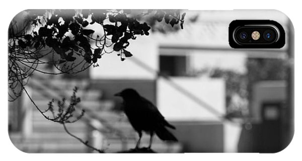 Crow Cameo IPhone Case