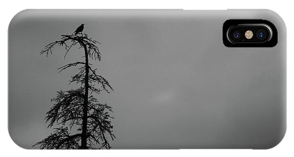 Crow Perched On Tree Top - Black And White IPhone Case