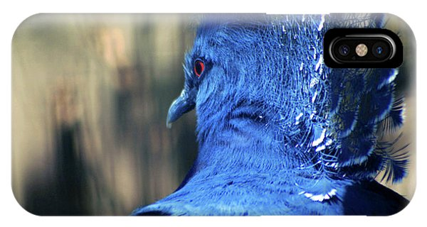 Crowned Pigeon IPhone Case