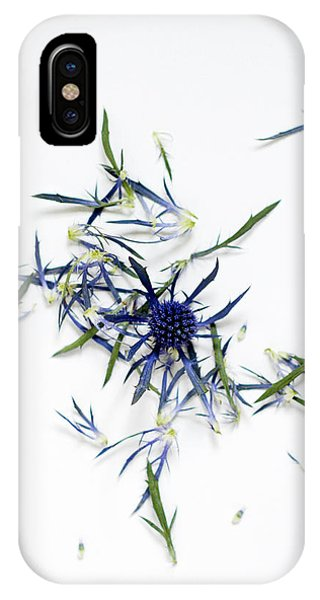 Crushed Blue Thistle Petals IPhone Case