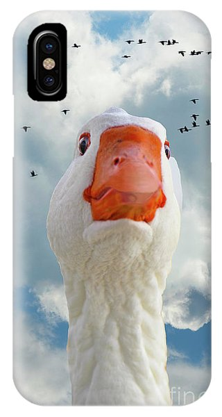 Cry Of The Wild Goose IPhone Case