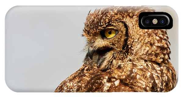 IPhone Case featuring the photograph Crying Spotted Eagle-owl  by Nick Biemans