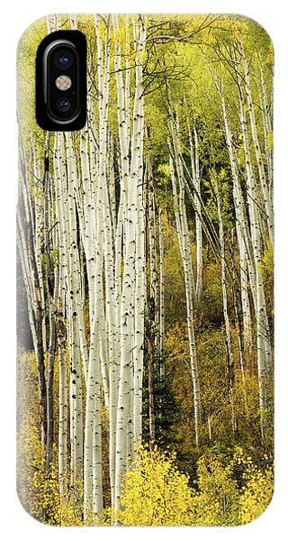 Crystal Aspens IPhone Case