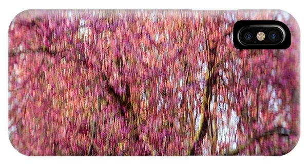 Columnar Sargent Cherry 2 IPhone Case