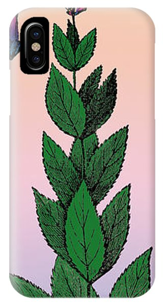 Rare iPhone Case - Culvers Root by Eric Edelman