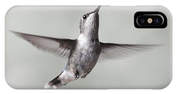 Beautiful Hummingbird iPhone Case - Cumberland Gap Hummingbird Precious And Proud by Betsy Knapp