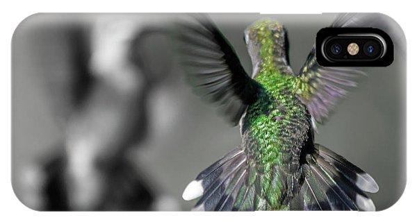 Beautiful Hummingbird iPhone Case - Cumberland Gap Hummingbirds by Betsy Knapp