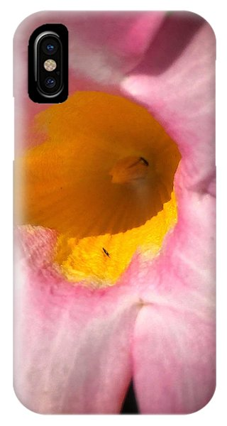Cup Of Nectar IPhone Case