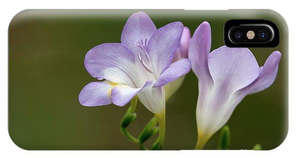 Cupertino Lavender Freesias IPhone Case