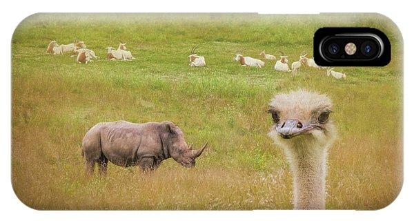 Ostrich iPhone Case - Curious Ostrich And White Rhino by Tom Mc Nemar
