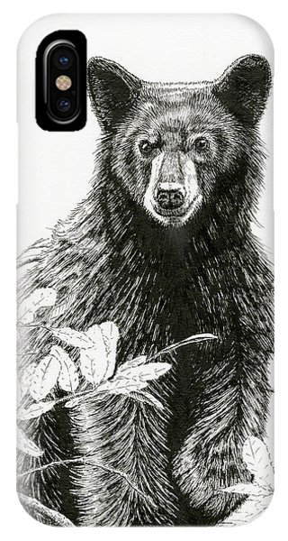 Curious Young Bear IPhone Case