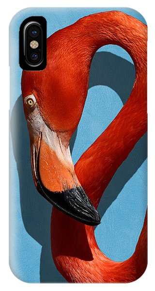 Curves, A Head - A Flamingo Portrait IPhone Case