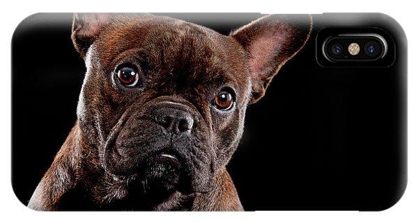 French Bull Dog iPhone Case - Cute French Bull Dog  by Hugo Orantes