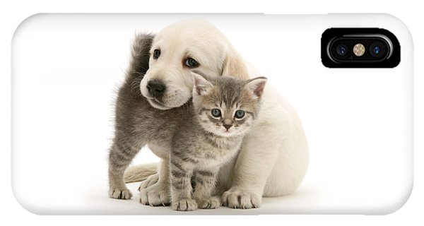Cute Kitten And Perfect Puppy IPhone Case
